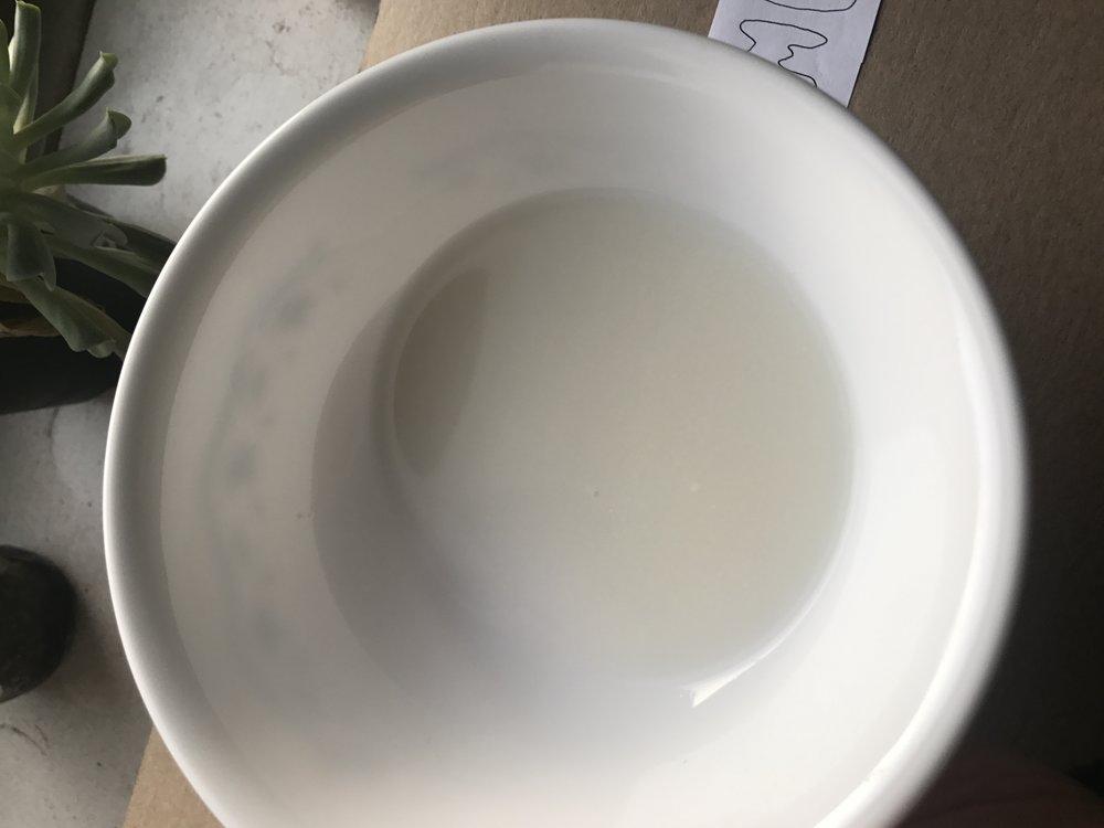 Rice Yogurt.JPG