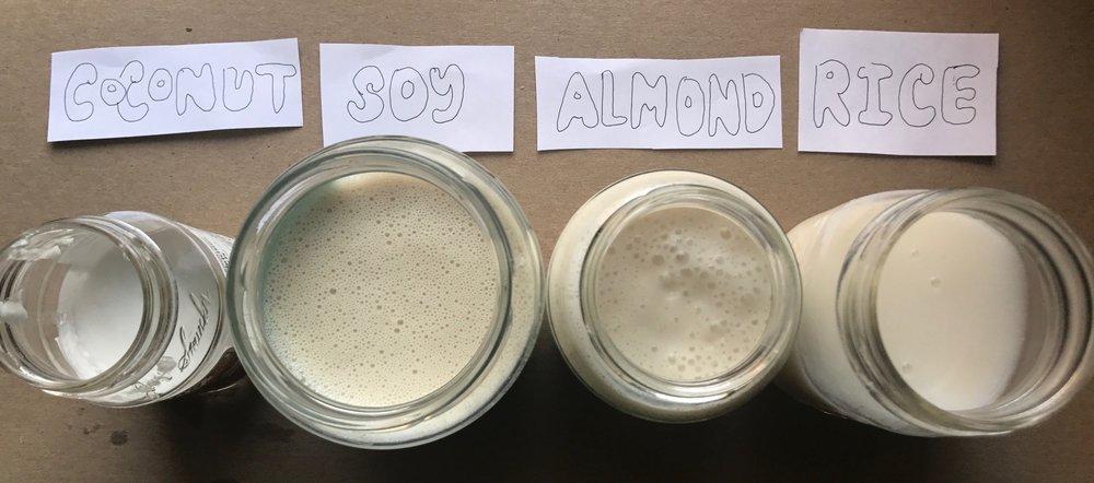 Yogurts before fermentation