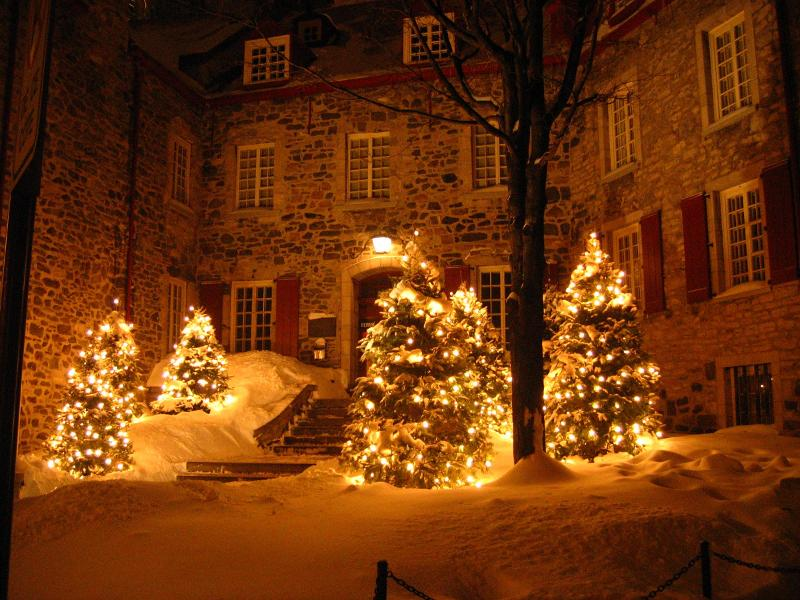 24_stunning_christmas_tree_images_old_fashioned_christmas_scenes_christmas_tree_pictures_photos (1).png