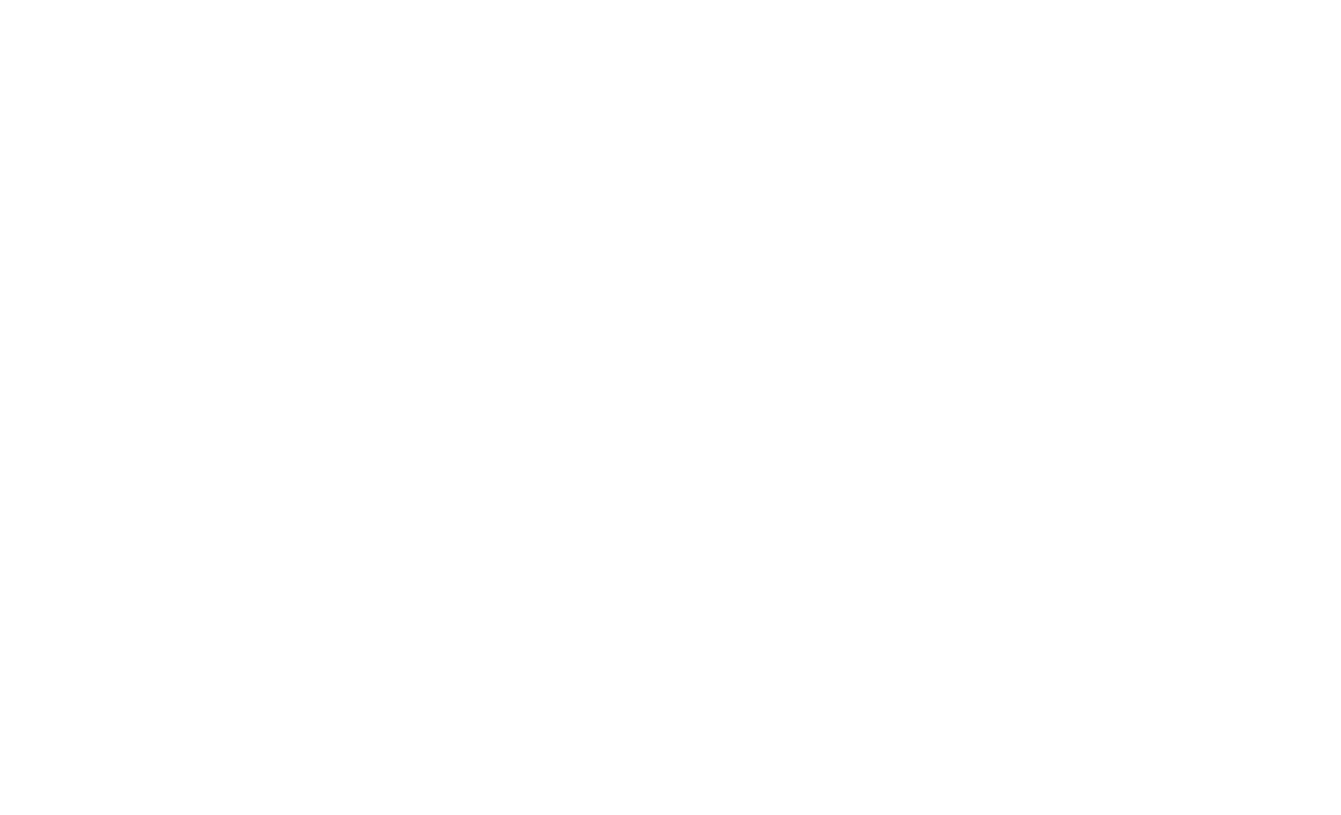 The Tiger's Eye