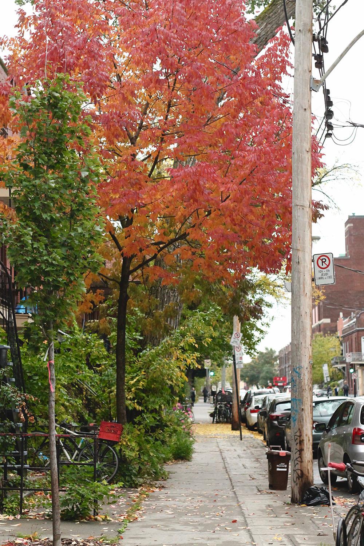 IMG_8695-Montreal-street-photography-via-5thfloorwalkup.com-by-Melina-Peterson.jpg