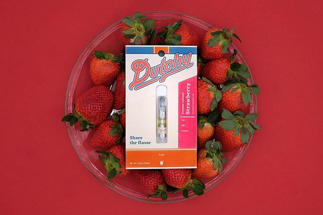 Did you know that strawberries are the only fruit with its seeds on the outside? #strawberryfacts #strawberrylovers #fruitflavor #fruitsandcannabis . . . . Warning: This product has intoxicating effects and may be habit forming. Marijuana can impair concentration, coordination, and judgement. Do not operate a vehicle or machinery under the influence of this drug. There may be health risks associated with consumption of this product. Should not be used by women that are pregnant or breastfeeding. For use only by adults twenty-one and older. Keep out of reach of children.