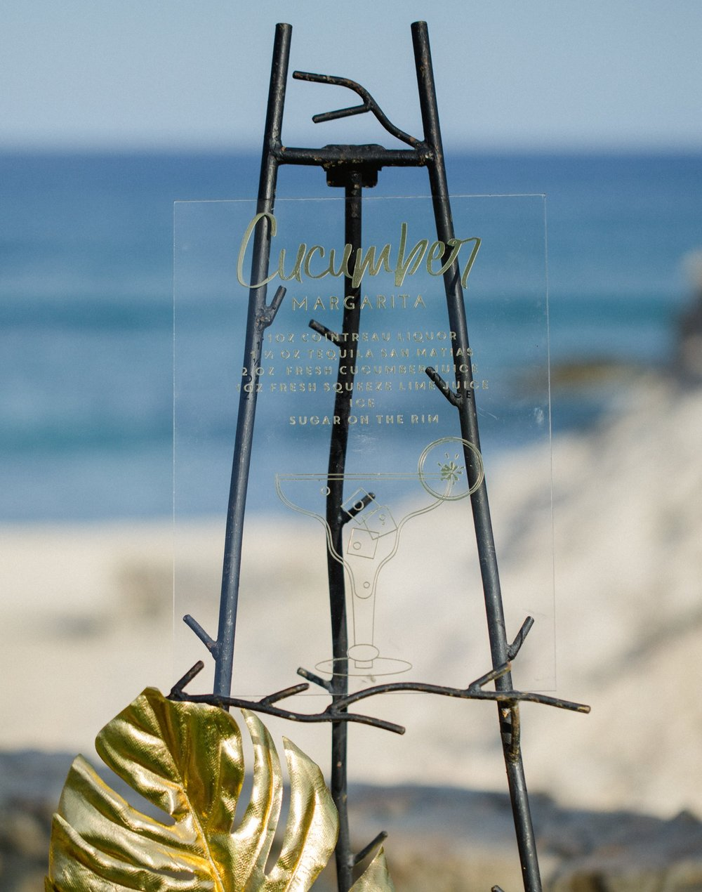 Cabo Photographer -  Sara Richardson-9965.jpg