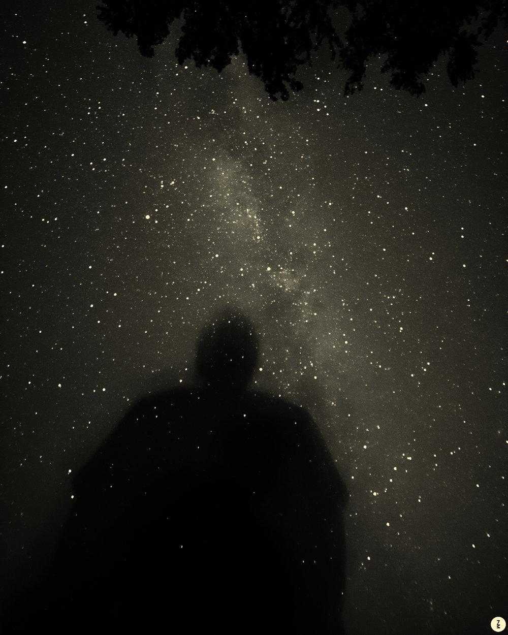 Shadow   2014