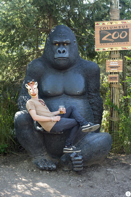 Monkey   2013