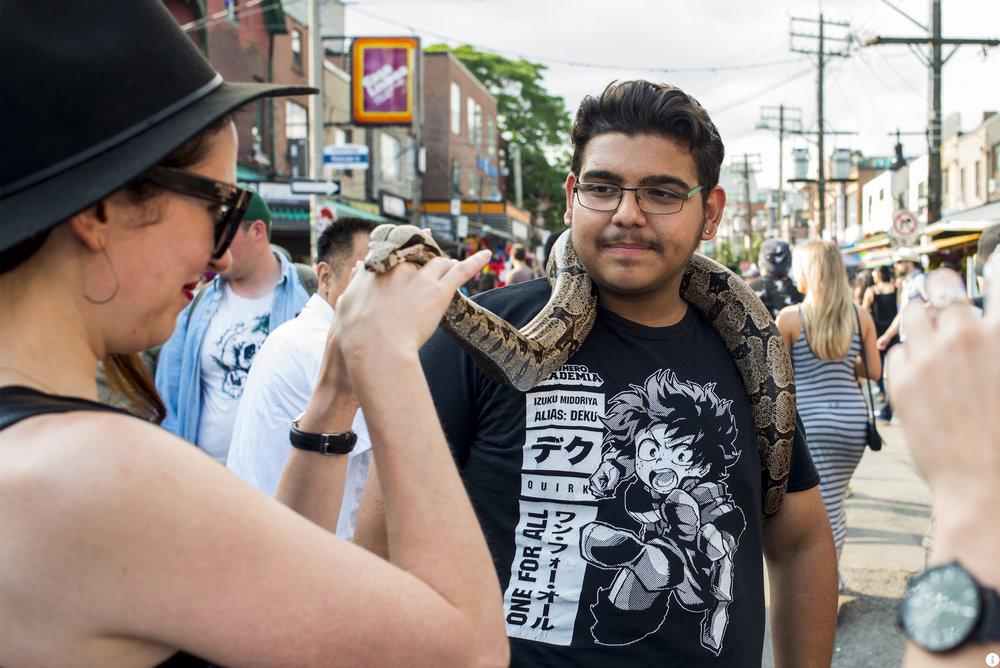 snake_DSC8738.jpg