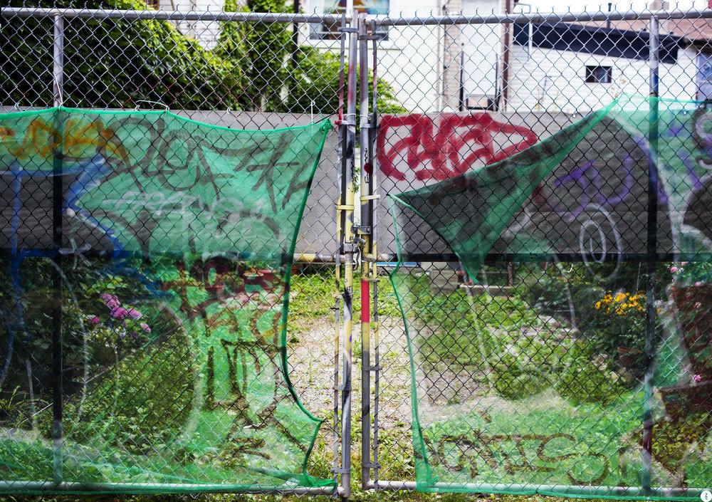 Toronto Fence  2018