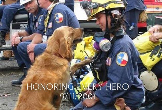 "Everyone Should remember 9/11/2001.  Are you remembering all the first responders that sacrificed their lives and health.  The lucky ones that survived the collapse of the towers are still struggling with daily health challenges.  Take today to remember to thank every first responder that ""sacrificed everything"". - - #neverforget #911 #worldtradecenter #dogsof911 #rescuedog #searchdog #goldenretriever"