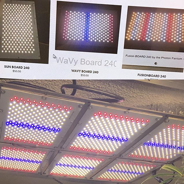 Wavyboards and 2700k/4000k alternating diode Sunboards back in stock! Limited Fusion Boards still in stock as well.  #photonfantomdesigns  #diyled #wavyboard240 #sunboard240 #fusionboard240 #ledgrowlights