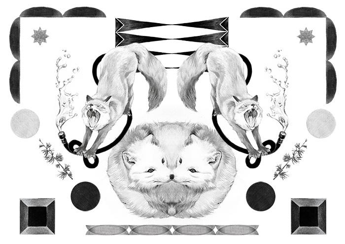 150728_fox 3.jpg