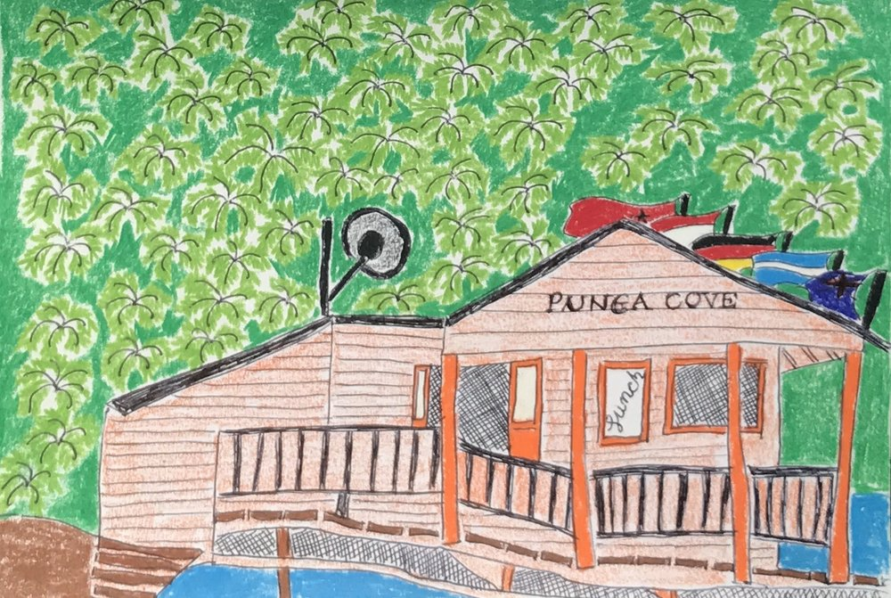 Punga Cove