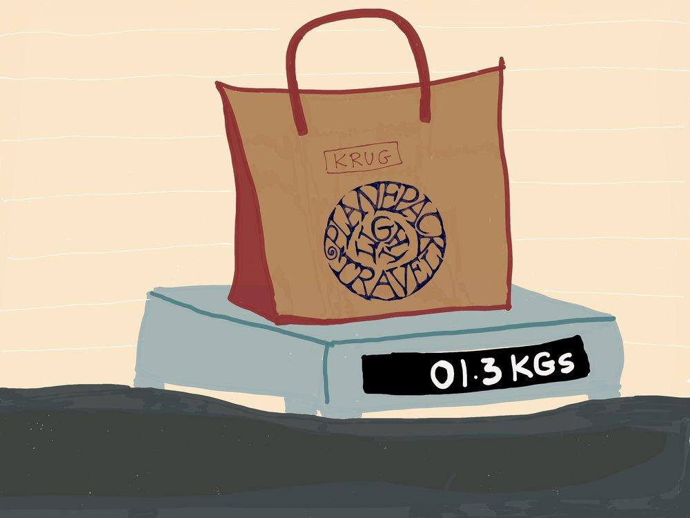 Planepack luggage weight