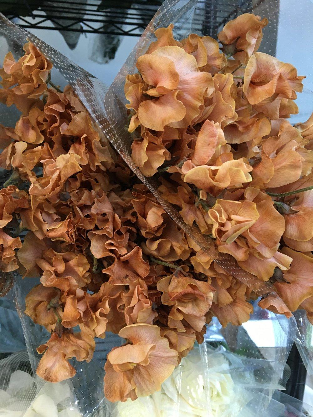 Flores de Chícharo <3.