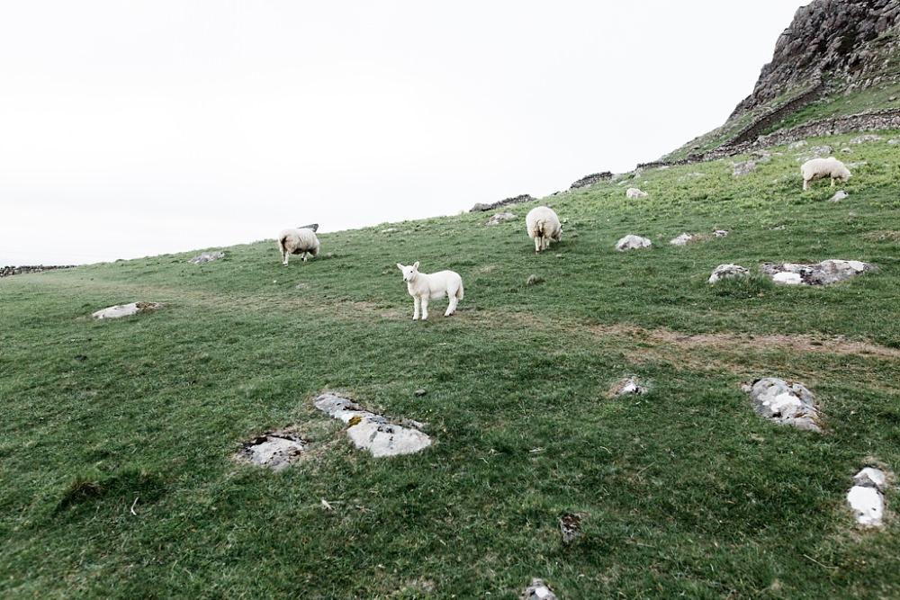 20160601 072545 - Isle of Skye.jpg