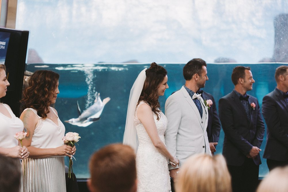 Lecinda Ward, Melbourne Wedding Photographer, Melbourne Aquarium_0240.jpg