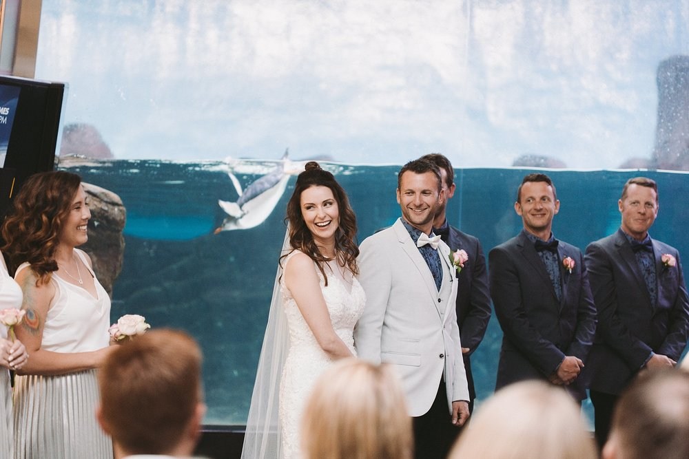 Lecinda Ward, Melbourne Wedding Photographer, Melbourne Aquarium_0241.jpg