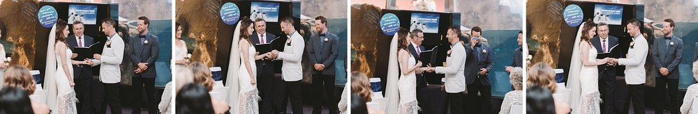 Lecinda Ward, Melbourne Wedding Photographer, Melbourne Aquarium_0247.jpg