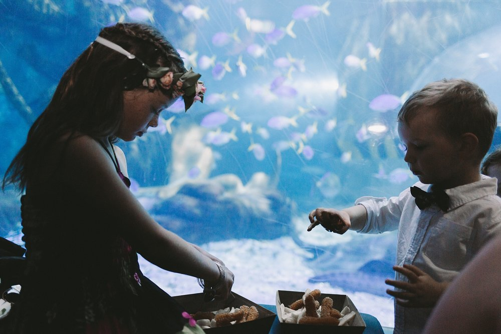 Lecinda Ward, Melbourne Wedding Photographer, Melbourne Aquarium_0269.jpg