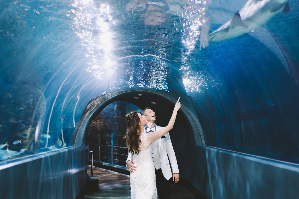 Lecinda Ward, Melbourne Wedding Photographer, Melbourne Aquarium_0270.jpg