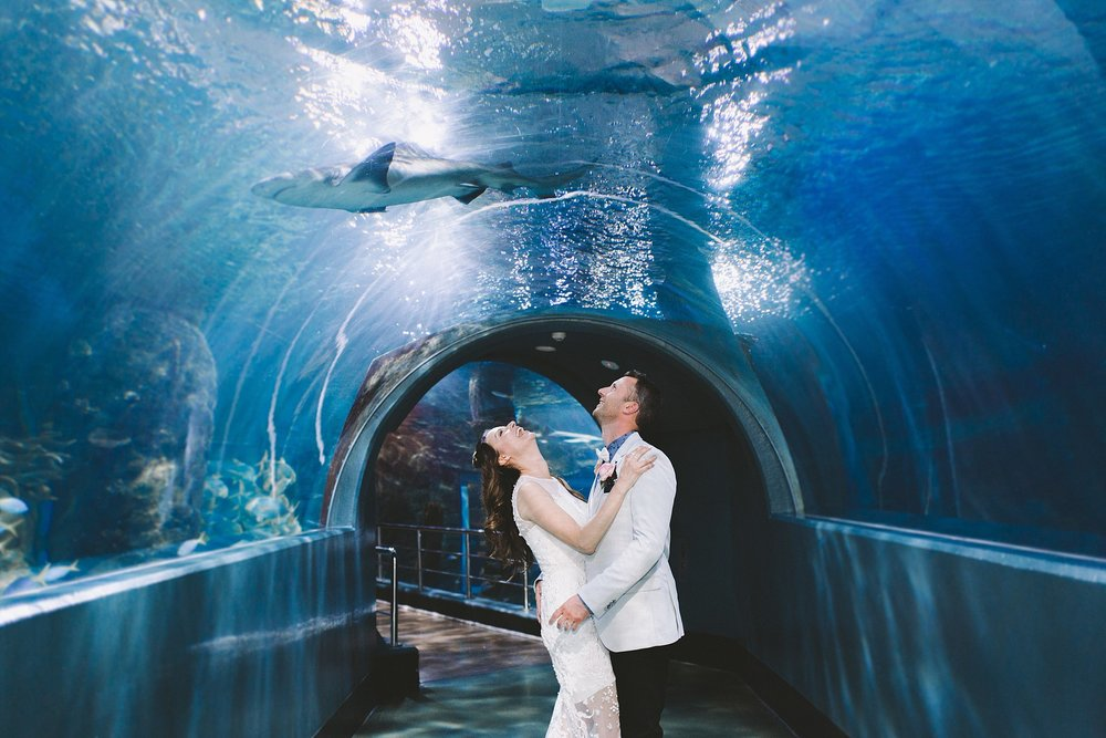 Lecinda Ward, Melbourne Wedding Photographer, Melbourne Aquarium_0271.jpg
