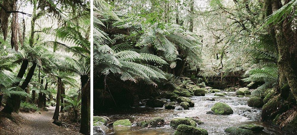 Tasmania Ten Years (329 of 462).jpg