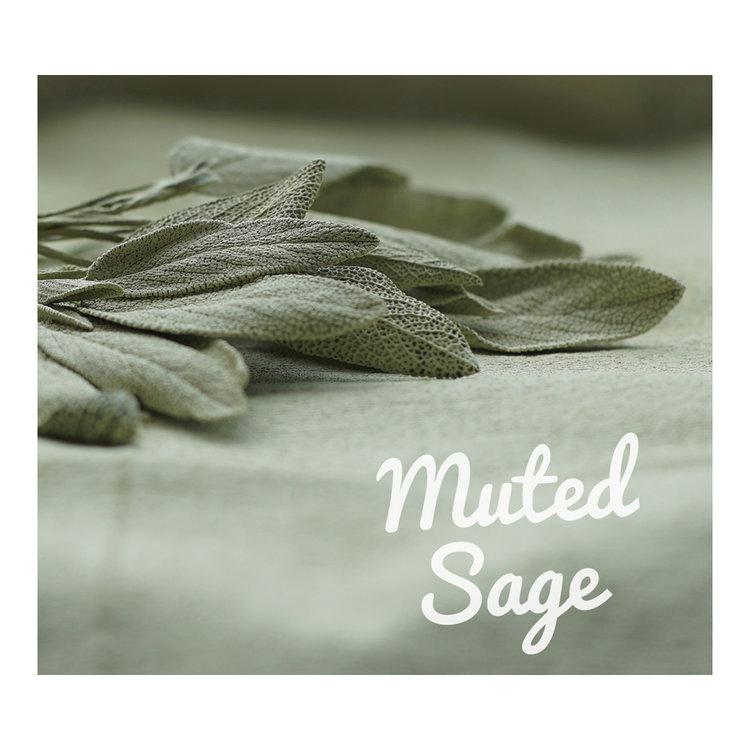 Muted+Sagr.jpg