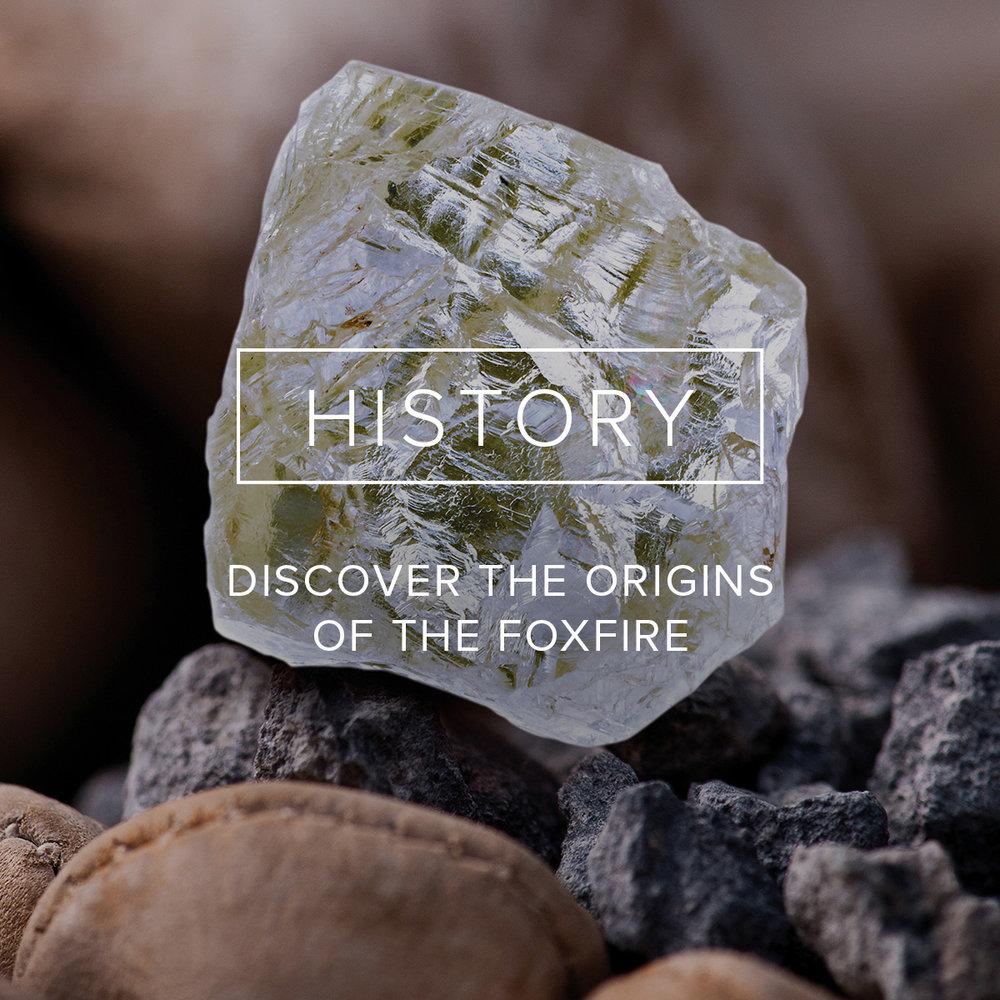FF_History_Link.jpg