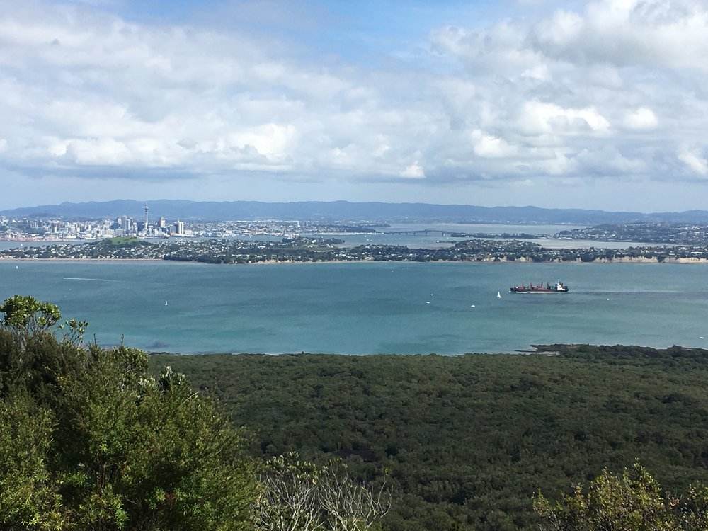 auckland from he summit.JPG