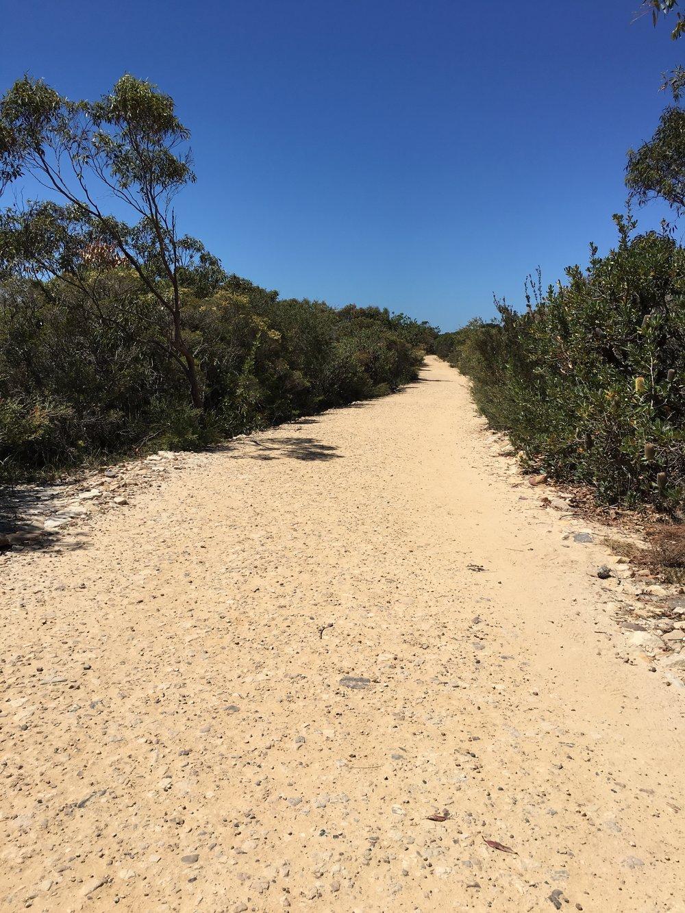 jibbon track
