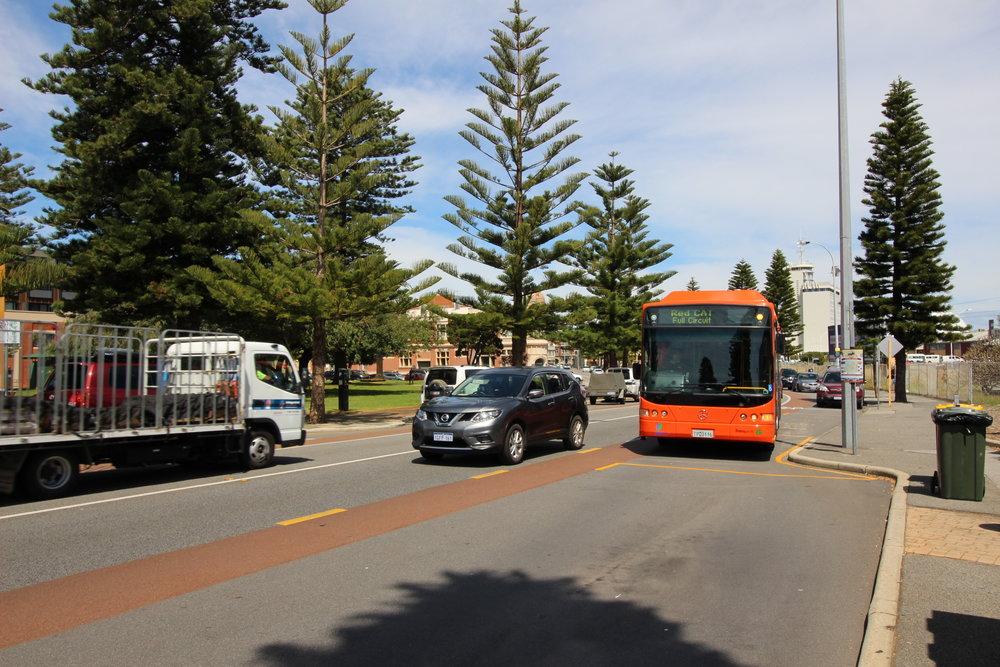 gato rojo en Perth, buses