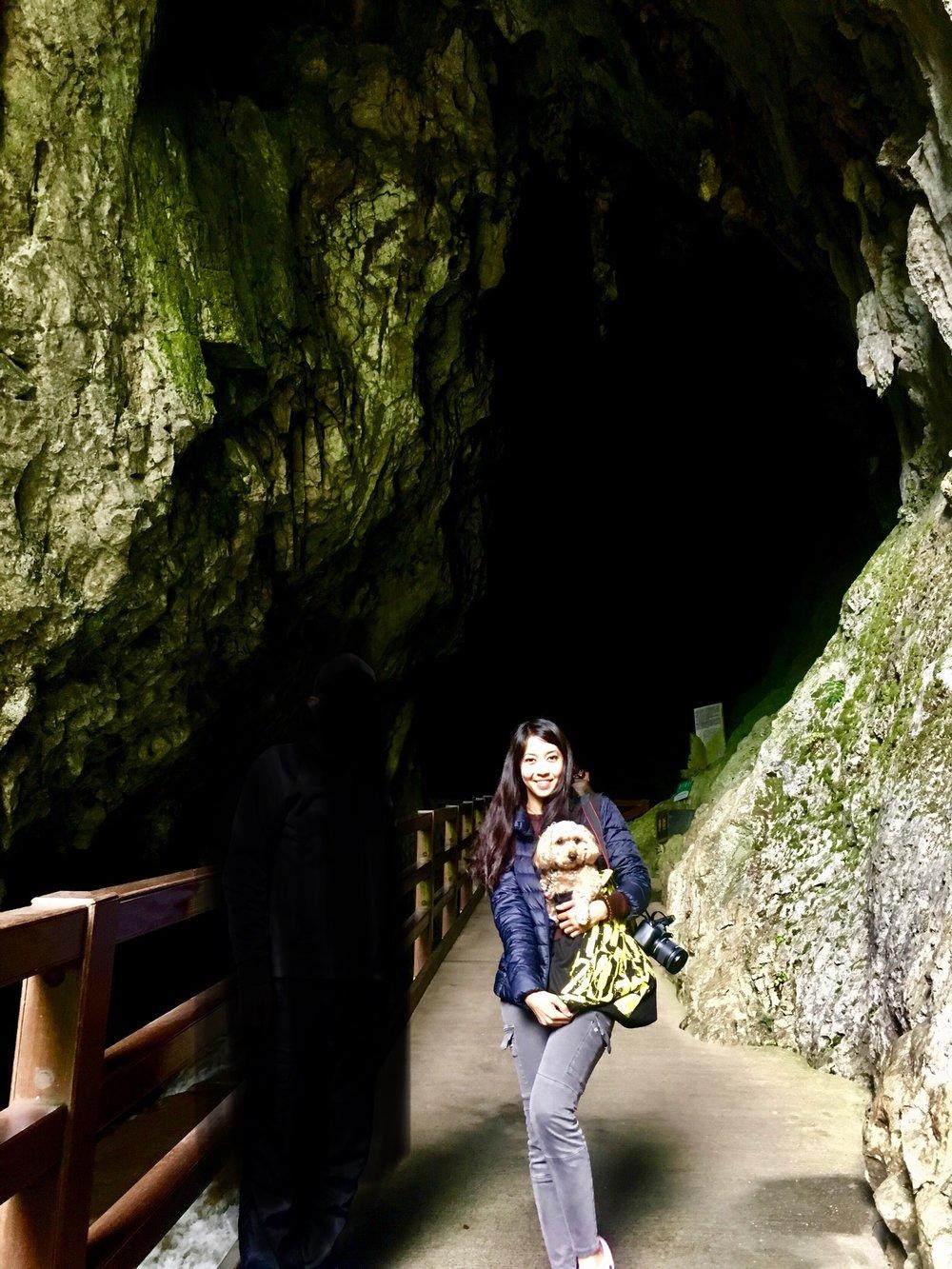se permiten los perros en la cueva Akiyoshido?
