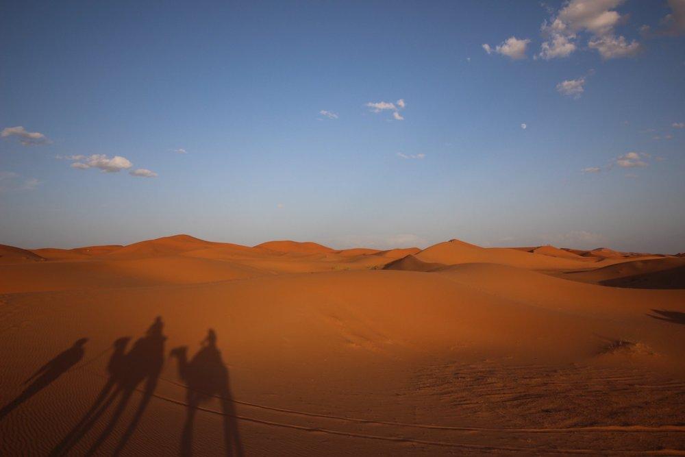 モロッコの砂漠
