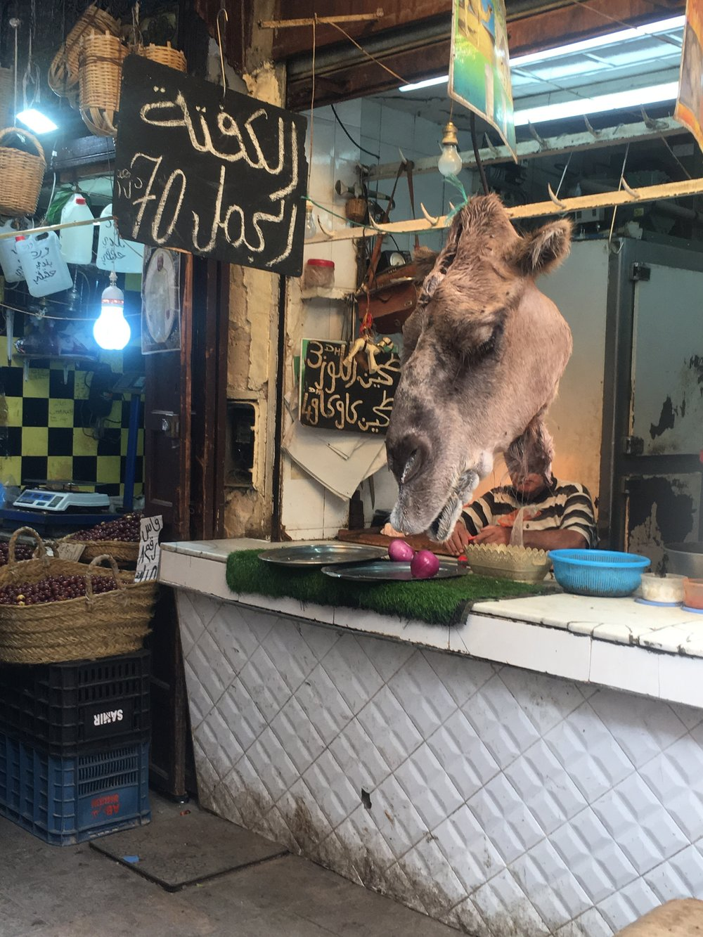Camel head in Fez medina