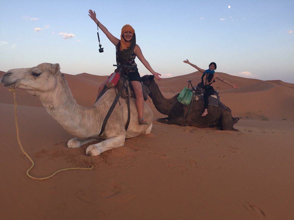 camel rides in the Sahara desert