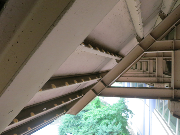 Flexibel: Das  Bird Free Gel  läuft nicht aus dem Schälchen, selbst wenn es an steilen Dachflächen installiert wird