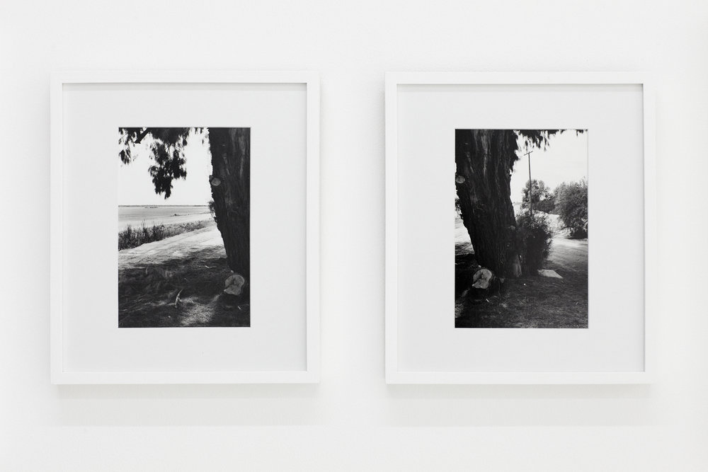 California', (2017)   Silver gelatin   prints. Framed diptych    8x10 in, silver gelatin prints.    Edition of 3