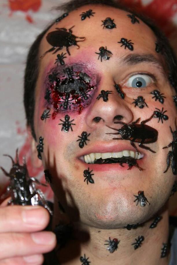 bugs 2.jpg
