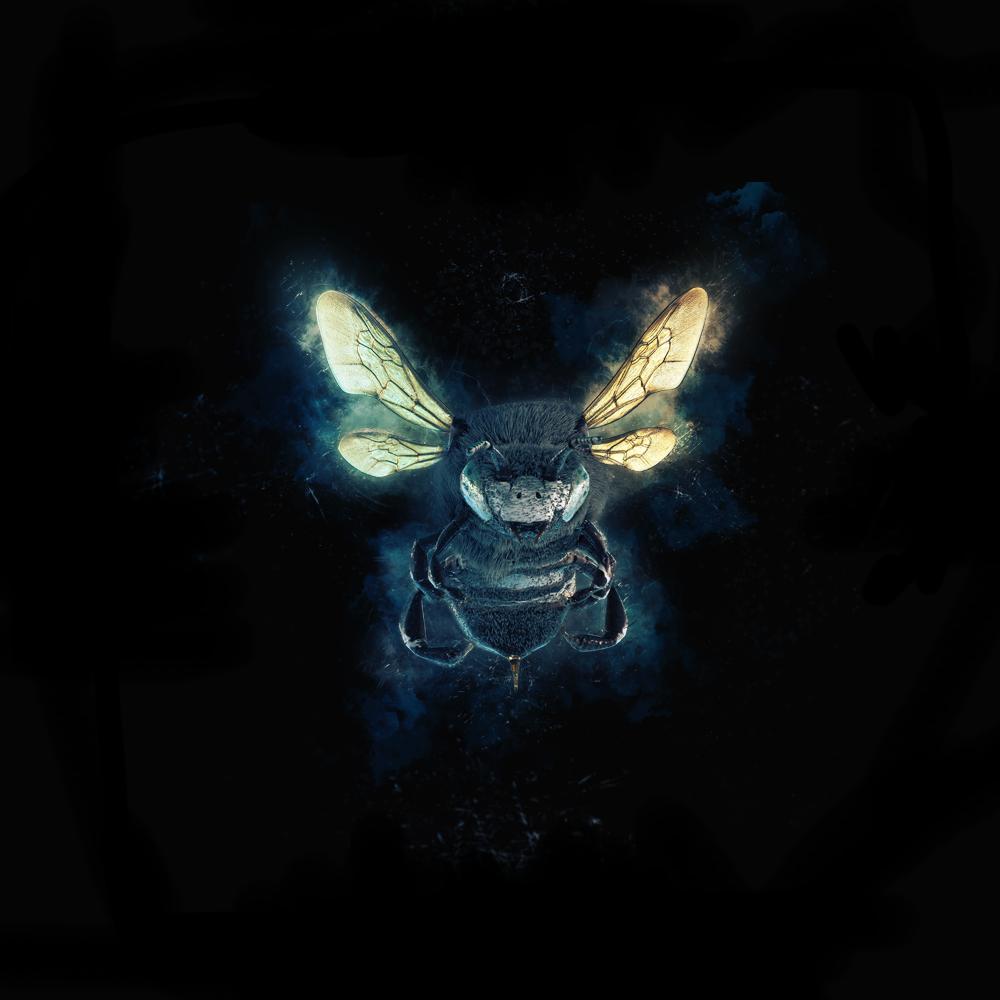 draft_bee.png