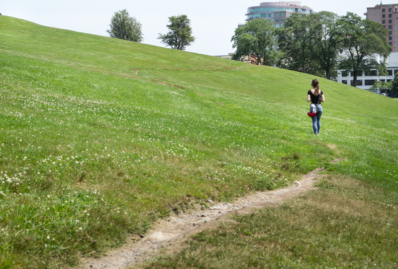 We spent time walking the site to investigate all the pedestrian paths, both formal and informal (this path being the latter).