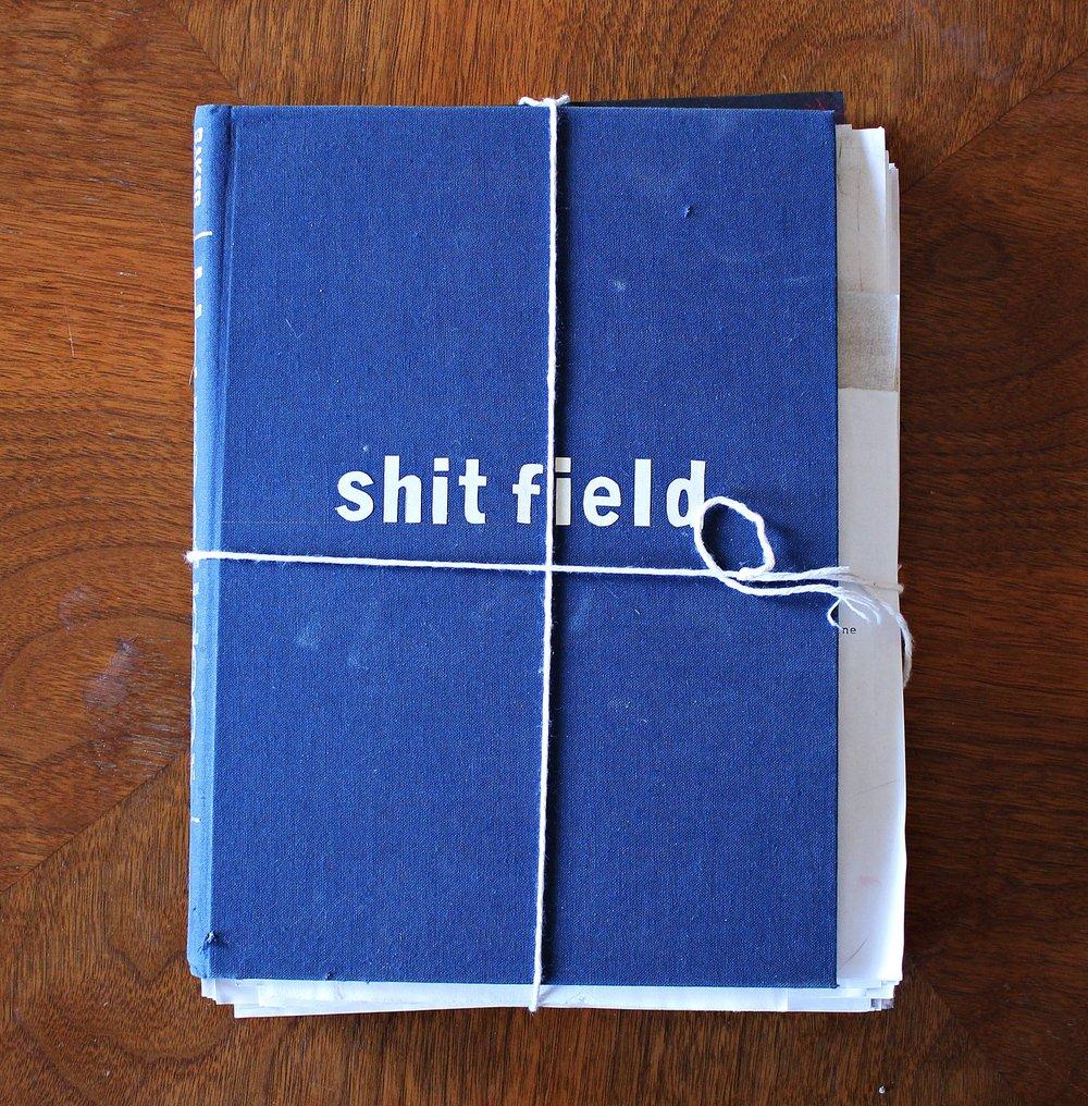 ShitField.JPG