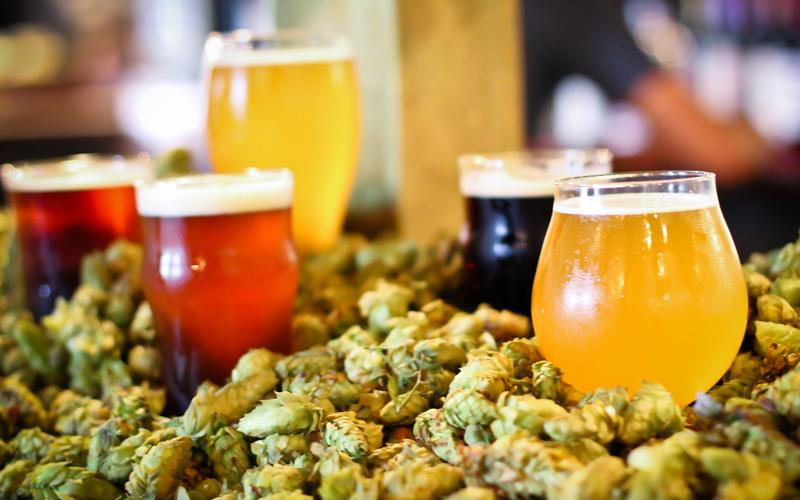 Craft-Beer-Hops.jpg