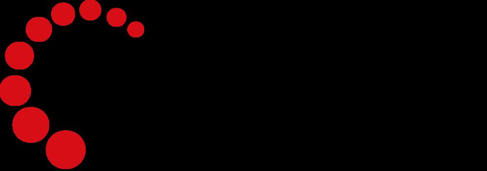 Logo Navarro.png
