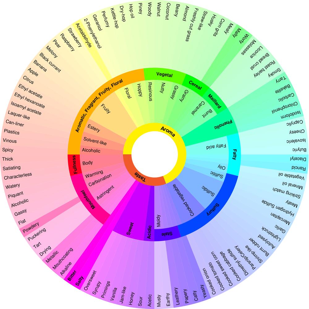 Vocabulario Sensorial