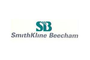 skb-logo.jpg