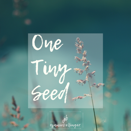One Tiny Seed.PNG
