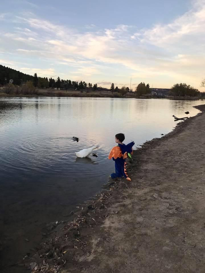 Dex at Palmer Lake