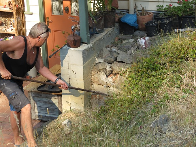 cygnet snake hunting
