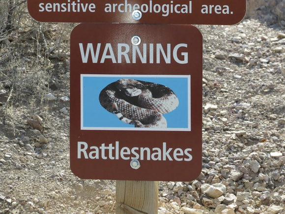 danger_rattlesnakes death valley