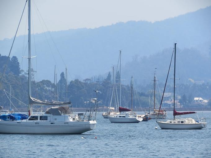port cygnet haze