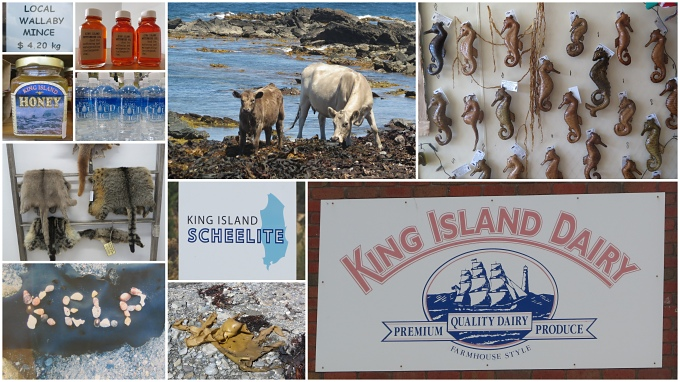 King island collage